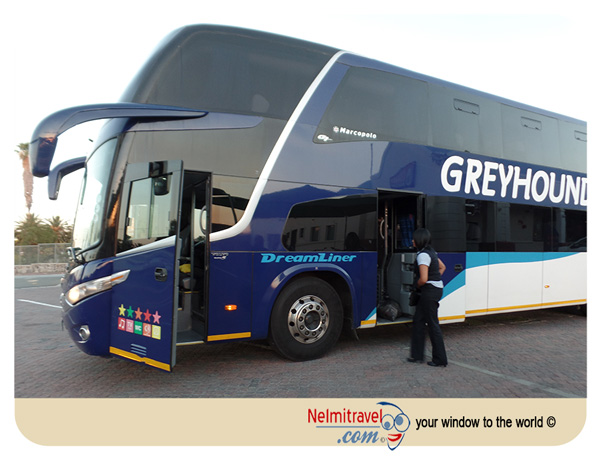 greyhound bus south africa review and information |nelmitravel